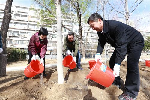 安贞街道义务植树活动1.jpg