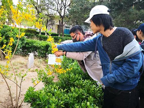 海淀区八里庄街道首师大社区开展植物挂牌活动(2).jpg