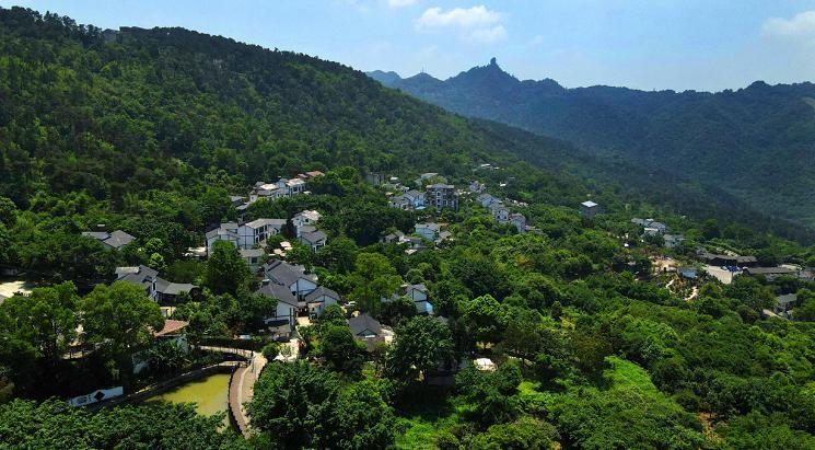 重庆南岸:打造美丽宜居村庄