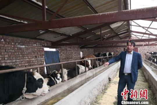 """作为教场村首批评选出的""""五星级文明户"""",李发奇通过""""道德信贷""""的款项扩大了养殖规模,目前他的养殖、种植合作社已经规模化稳定发展。(资料图) 杨娜 摄"""