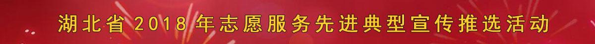湖北省2018年志愿服务先进典型宣传推选活动