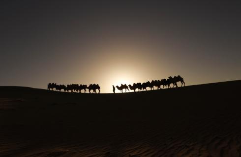 呼和浩特 沙漠晨曲1.jpg