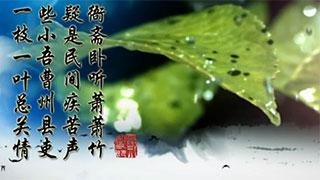 6d.jpg