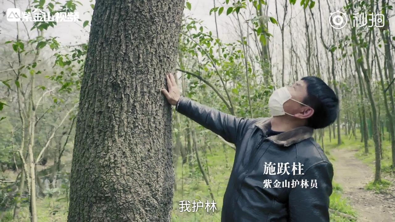 南京67岁老人护林50年:一直坚守下去,[00_00_24][20200312-104449].jpg