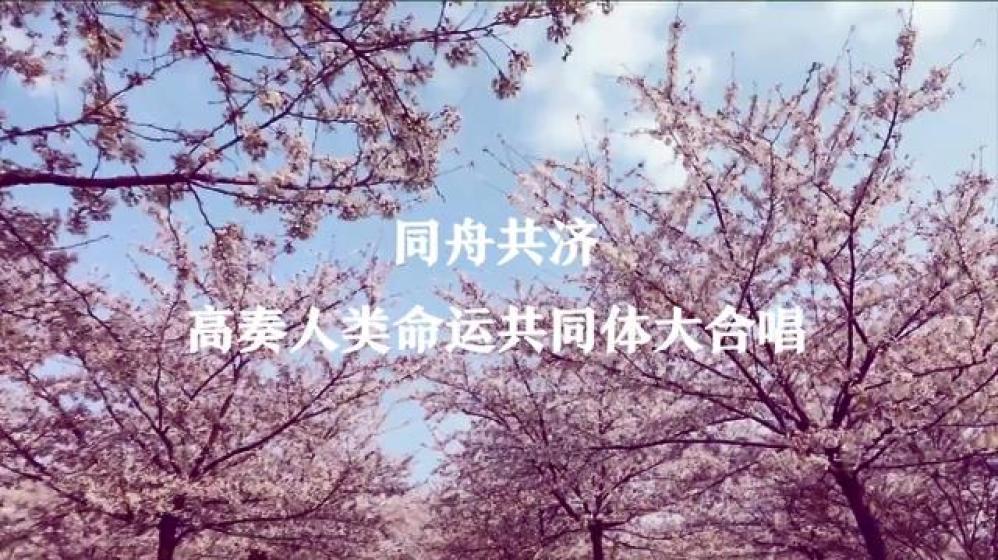 高奏人类命运共同体大合唱-新华网[00_05_14][20200326-162850].jpg