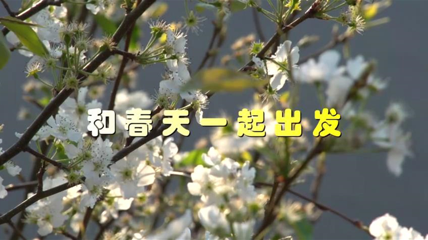 "蒙城(cheng)戰""疫""記[封(feng)面圖].jpg"